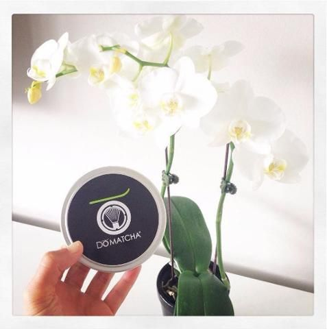 Remember to send us your on-location DōMatcha®️️ photos for a chance to win a FREE tin of Matcha! Label must be visible. Send in your photos to info@domatcha.com or hashtag #DoMatchaContest by May 31st! #Photos #PhotoContest #Matcha #HealthyLiving #Tea Thanks Aly Shoom Nutrition for the photo :)