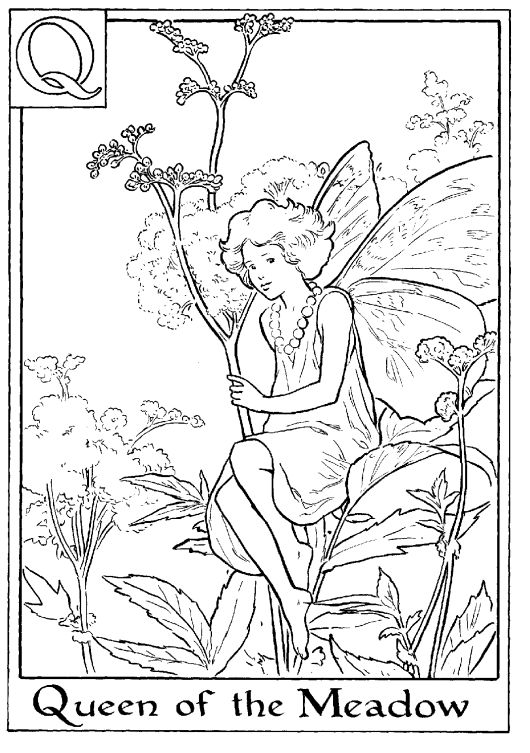 Fairy Coloring Pages Meadow Flowers And Flower Fairies On Meadow Coloring Pages