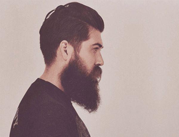 The 25 best long beard styles ideas on pinterest long beards long beard urmus Gallery