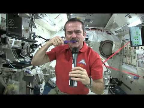 Lesson 14: Space Travel...Bits of hair and nails or blobs of water don't play well with expensive equipment; add microgravity to the mix, and you've got a disaster waiting to happen. That's why crew members are extremely careful when it comes to cleaning their bodies. Canadian expedition commander Chris Hadfield (who became a social media superstar while out there in 2013) said that they even go so far as to swallow their toothpaste after brushing their teeth.