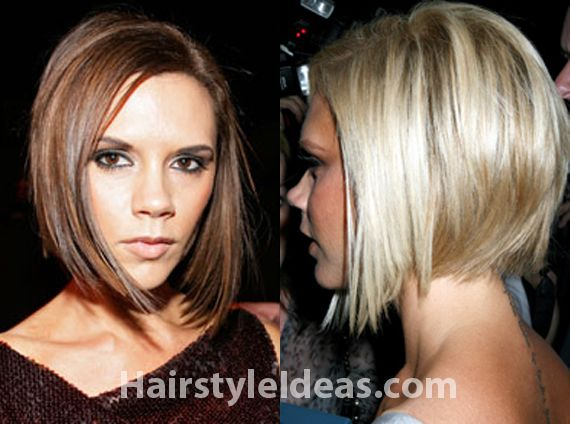 cropped hair styles 1000 ideas about hair back on 4230