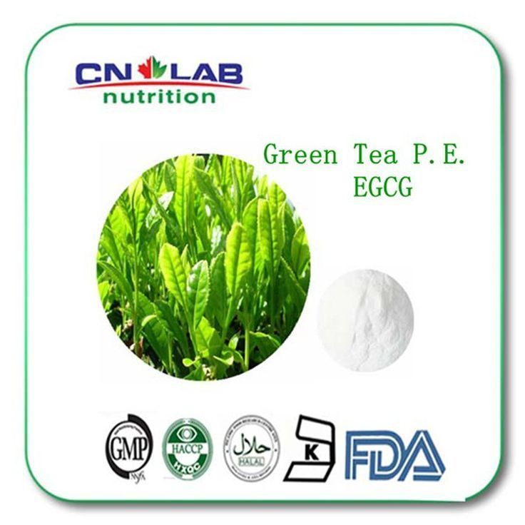 Buy 3 Get 1 free Green Tea extract 98% Tea polyphenols diet weight loss product