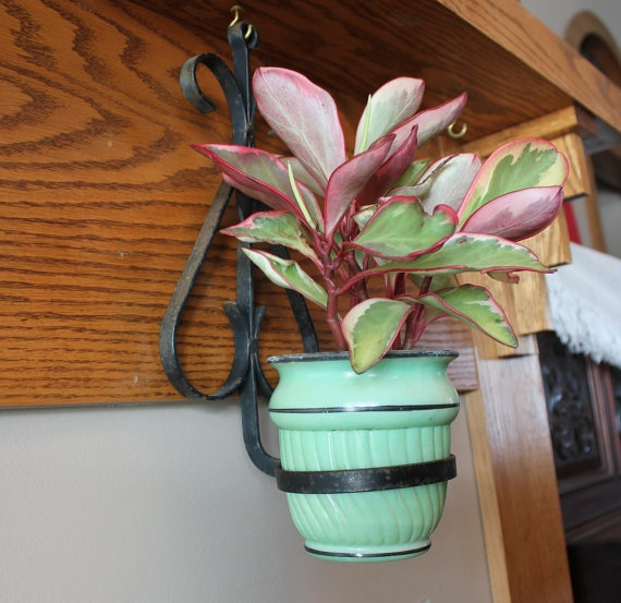 Vintage Wrought Iron Wall Mount Plant Holder By