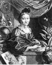 Anna Maria Sibylla Merian (Frankfurt am Main, 2 april 1647 – Amsterdam, 13 januari 1717) was een Duitse kunstenares en entomologe die planten en insecten bestudeerde en daar gedetailleerde tekeningen van vervaardigde. In haar publicaties gebruikte zij zelf nooit haar eerste naam Anna. Haar observaties en documentatie van de metamorfose van rupsen tot vlinders zijn een belangrijke, zij het niet algemeen bekende bijdrage aan de entomologie. Zij was voor zover bekend de eerste die de insecten…