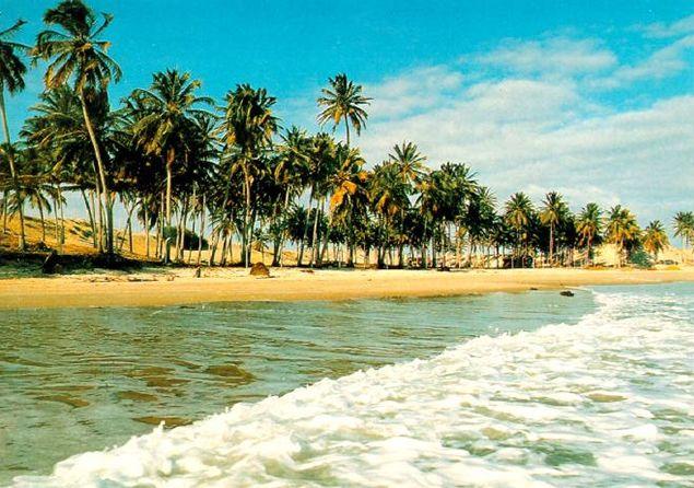 La información sobre el clima tropical, incluyendo sus cuatro tipos : bosque tropical, monzón tropical, sabana tropical y la altitud tropical.