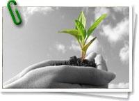 En esencia, la Agricultura Sostenible se puede describir como la práctica de la agricultura ecológica. En lugar de centrarse sólo en la viabilidad económica de los cultivos, implica también el uso eficaz de los recursos no renovables, dando lugar a alimentos nutritivos y mejorando la calidad de vida de los propios agricultores. + info: www.barrameda.com.ar/dp/