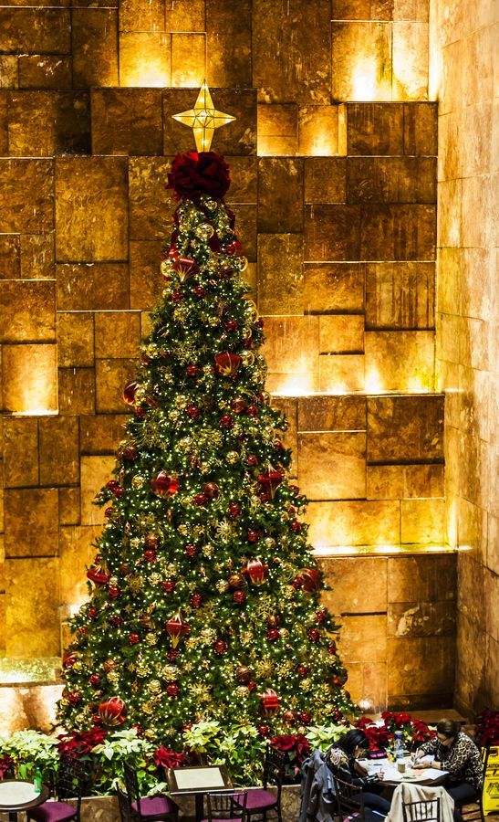 Christmas Tree, NY