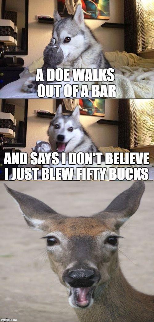 Bad Pun Dog | Bad pun dog | Pinterest | Bad pun dog, Pun dog and Worst puns