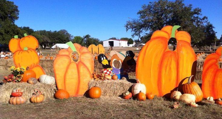 Pumpkin Patches in San Antonio