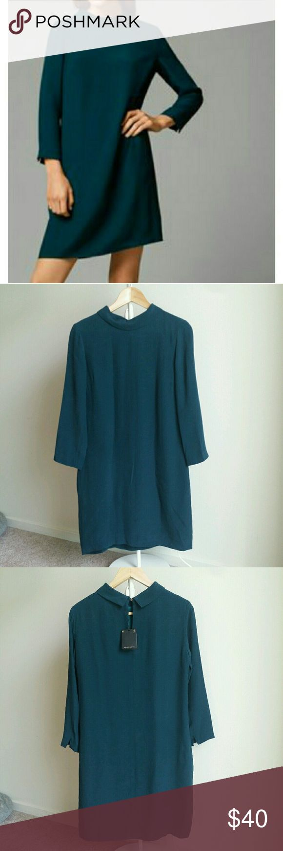 NWT $150 Massimo dutti green shift dress Beautiful teal green color. Shift dress. Size 4. Lined. 3/4 sleeves. Massimo Dutti Dresses Long Sleeve