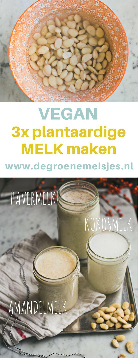 Maak zlef 3 soorten plantaardige vegan melk met deze uitgebreide uitleg voor amandelmelk, havermelk en kokosmelk