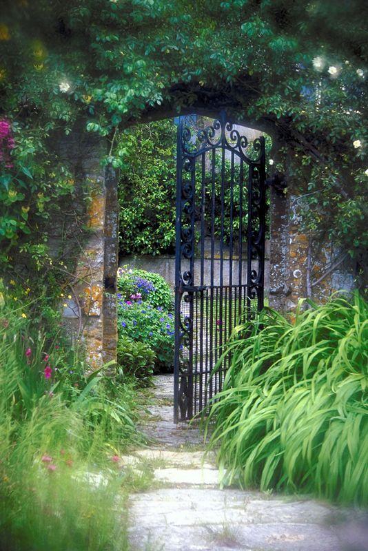 Secret Garden: 17 Best Ideas About Mystic Garden On Pinterest