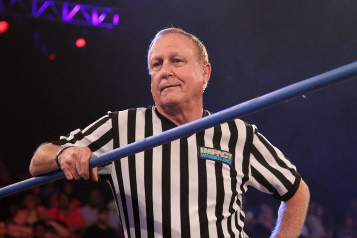 Earl Hebner To Be Inducted Into TNA Hall of Fame - TKO  Legendary pro wrestling referee Earl Hebner will be inducted into the TNA Hall of Fame on Oct. 3, one night before TNA's annual Bound For Glory pay-per-view. The event will take place in Hebner's home state on Virginia.....