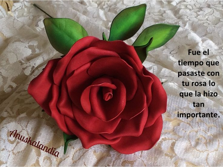 Anuskalandia goma eva o foamy flores rosa reto el - Flore de goma eva ...