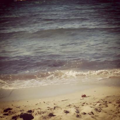 #buonadomenica da #arcocadura  #sunshine #sea #relaxed #salentopics