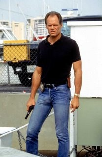 Fred Dryer as Hunter