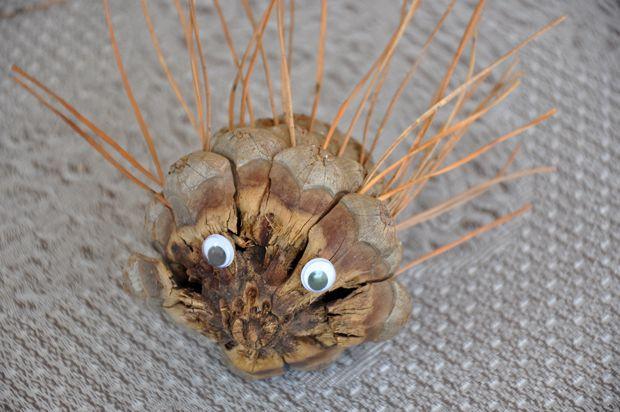 Come creare dei ricci con le pigne e gli aghi di pino http://www.piccolini.it/post/752/come-creare-ricci-con-le-pigne-e-gli-aghi-di-pino/