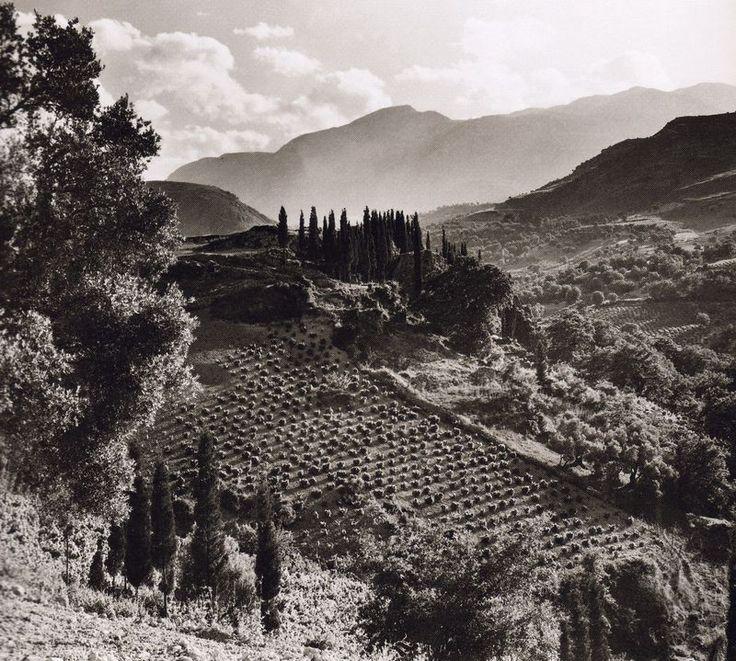 Λάκκοι Χανίων 1927-1939