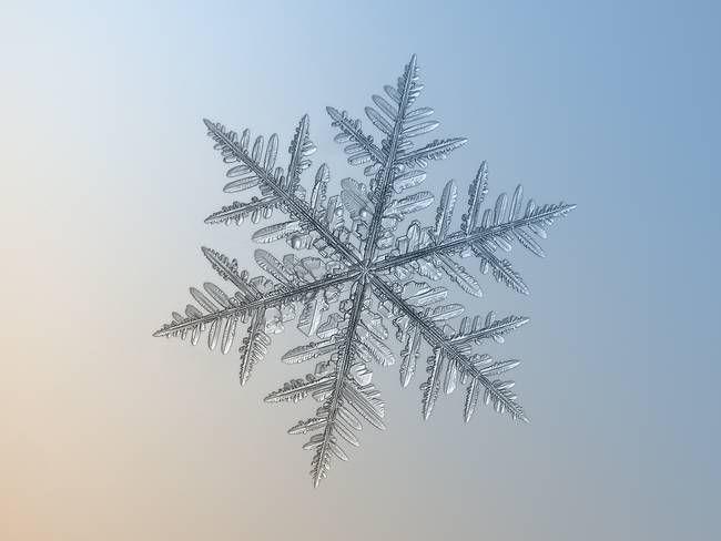 snowflakes9