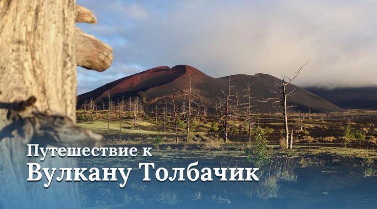 Путешествие к вулкану Толбачик - это марсианские пейзажи таинственный Мертвый лес пещеры и ещё горячая лава и конечно же Долина великанов с которой открывается вид на самый высокий действующий вулкан Евразии - Ключевской. 6 дней от  29100 руб.  Даты путешествий: 3 августа - 8 августа 2018 года  31 августа - 5 сентября 2018 года  #freelanceguides #travelacrosskamchatka #путешествияпокамчатке