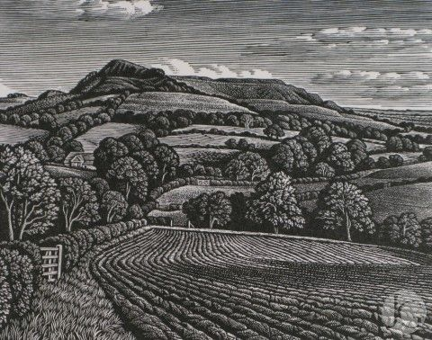 Wood Engravings by Howard Phipps from The Jerram Gallery, Sherborne, Dorset. Contemporary British pictures and sculpture