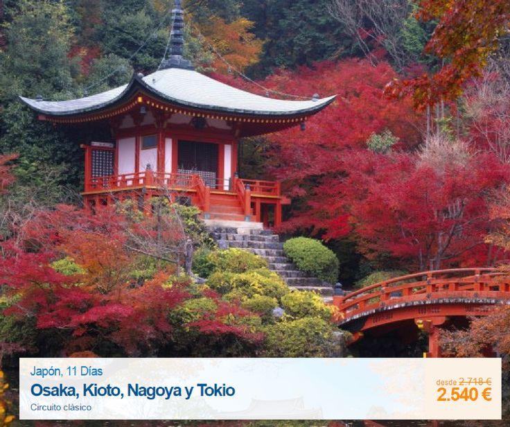 Gran oportunidad para viajar a #Japón! Mira que súper precio tenemos para descubrir el destino más sugerente de #Asia, 11 dias de viaje en un circuito, con salidas el 20 de Marzo y 24 de Abril. #viajar #vacaciones #viajero #travel #traveler