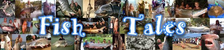 Biggest Alligator Ever Caught | Fish Tales