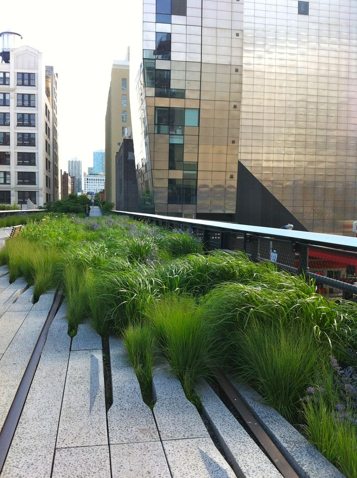 Interesting way to merge concrete into surrounding landscape - perhaps on edge of patio?   The High Line in NYC