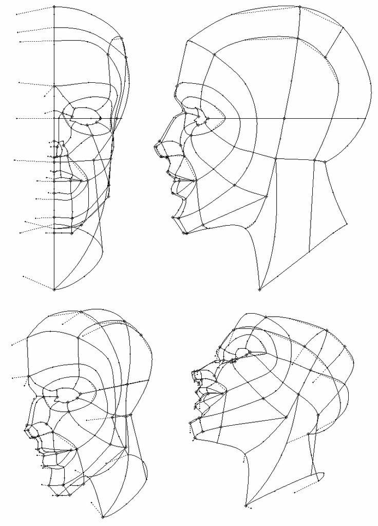 Spline modelling vs. Box modelling and related geometry.