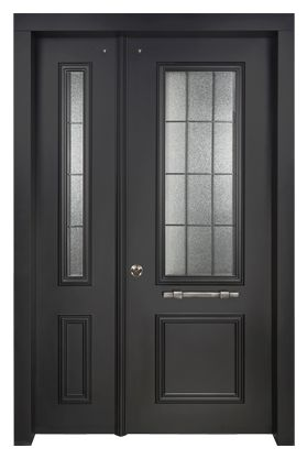 Decorative residential steel security doors with many ...