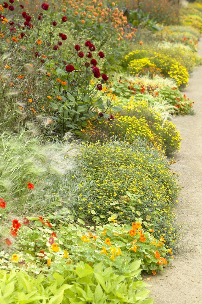 Border Design: Ordnung für den Garten • Blumen & Pflanzen Blog • 99Roots.com