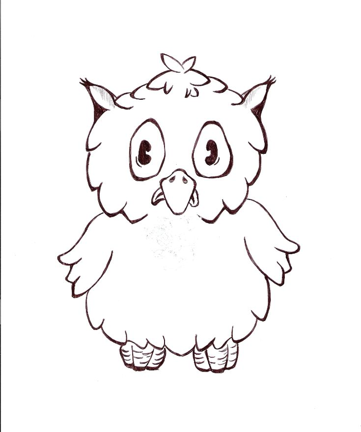 owl outline drawing owl outline tattoo by free printable