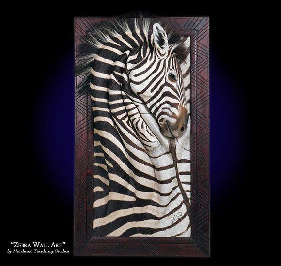 Zebra Wall Art Mounts Zebra Wall Art Art Taxidermy Display