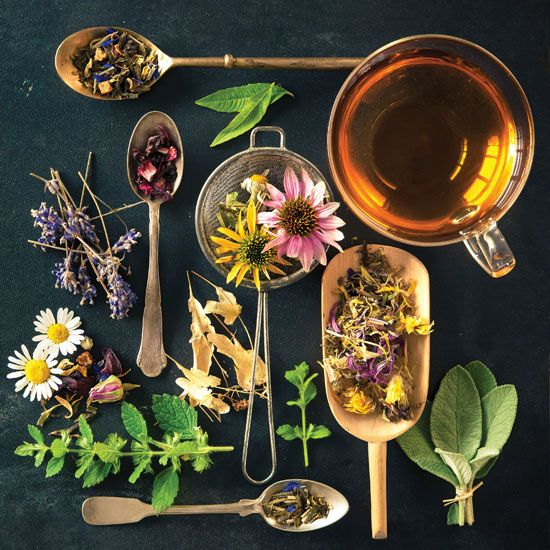 Tea Time: 10 Herbal Teas for Health - Health and Wellness - Mother Earth Living