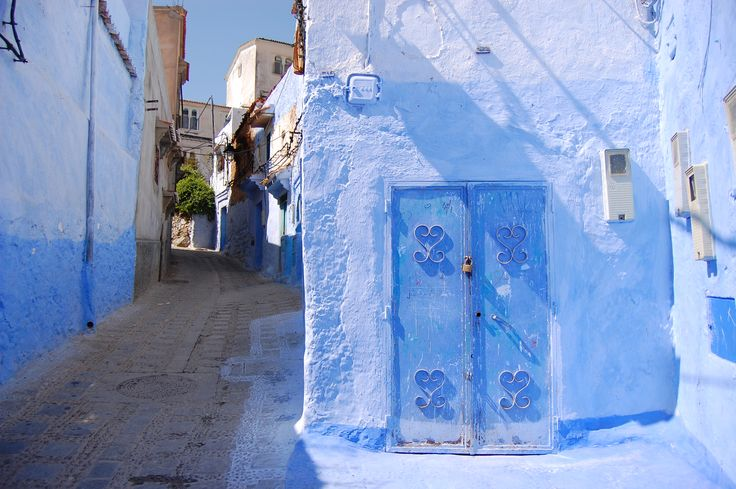 #maroko, #podroze, #Essaouira , #afryka, #podrozepomaroku, #trave, #morocco,