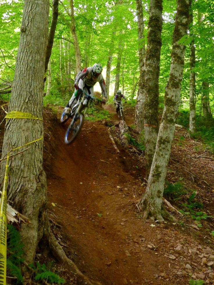 Looks just like my mtb sweetspot  near home | Downhill mountain bike race trail | @ https://www.pinterest.com/wocycling/