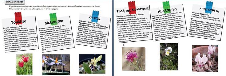 Φύλλο εργασίας για τα σπάνια ενδημικά είδη χλωρίδας της Κύπρου