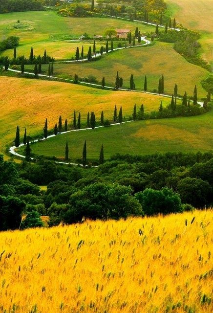 Zigzag Road Tuscany Italy. I have been on that road on a