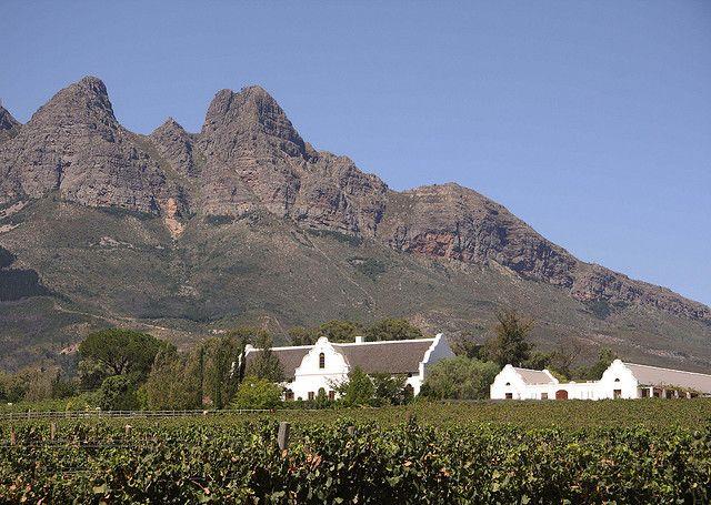 Wine Estate in Wellington