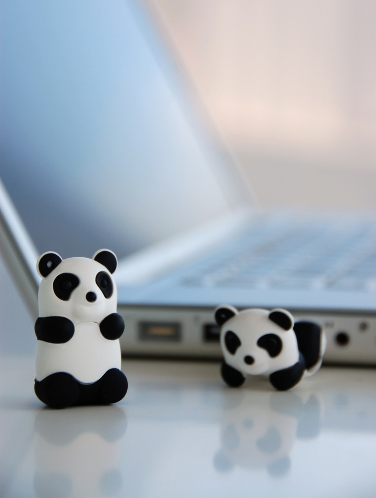 The Panda Drive, like all of The Bone Collection's products, is completely bio-degradable. It's cute too, and even available with a blue or pink cap.