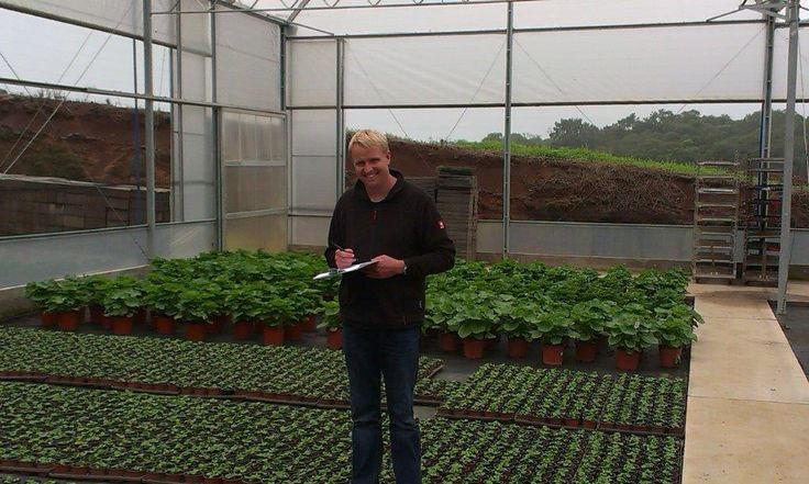 Grower Daniel Hesse from Floricultura Ursula, Brasil