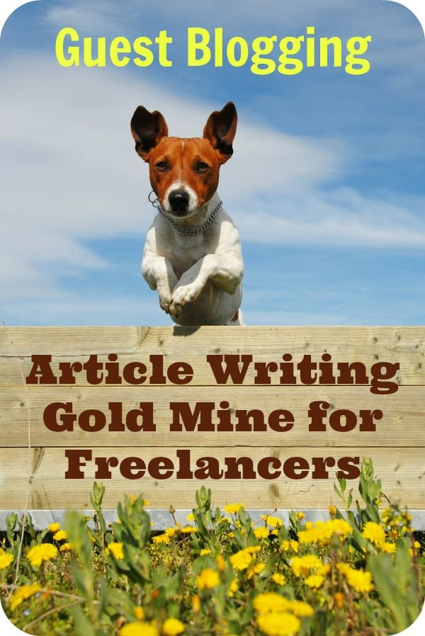 Guest blog writing service