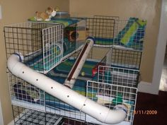 awesome guinea pig cages - Google Search