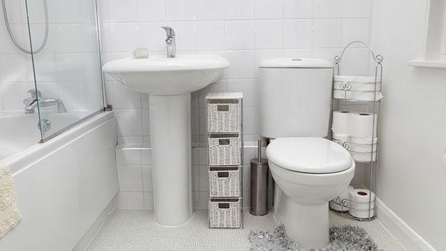 Le remplacement d'une toilette | Rénovation Bricolage