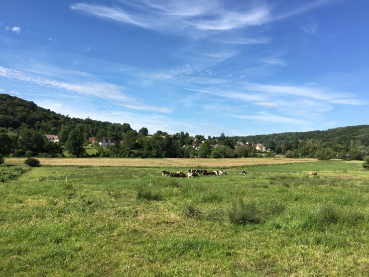Vallée-de-Chevreuse / © Rando Navigo