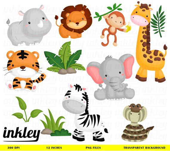 Jungle Animal Clipart Cute Animal Safari Clipart Free Etsy Animal Clipart Baby Jungle Animals Baby Clip Art