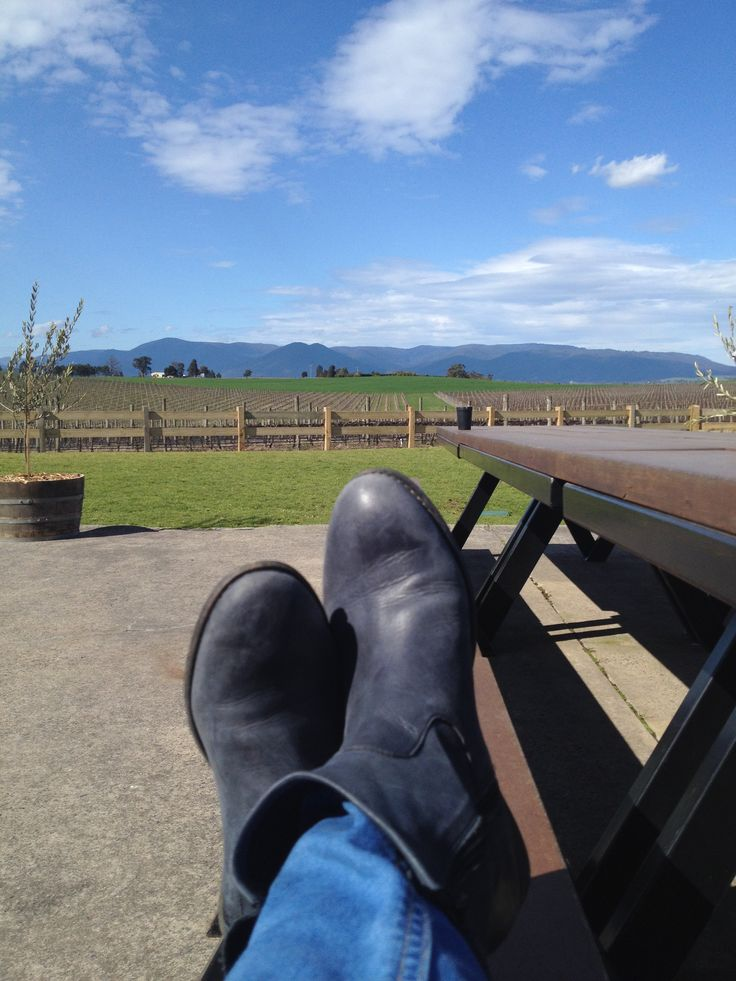 Views of the Great Dividing Range are to found all through the Yarra Valley.