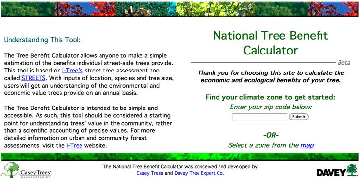 Webelos Forester. National Tree Benefit Calculation