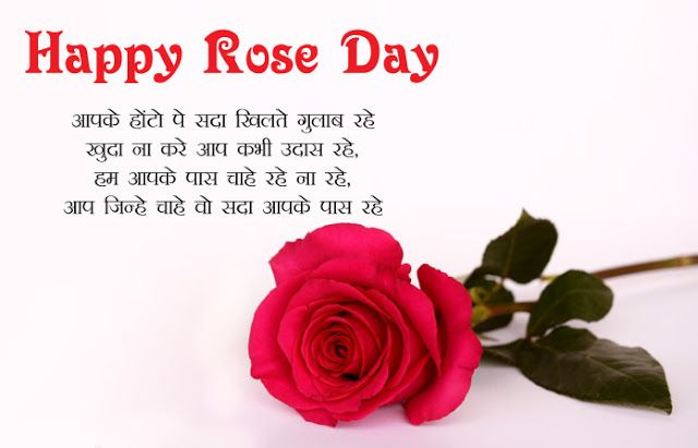 Happy Rose Day Wishes 7 February 2020 Rose Day Shayari Wishes