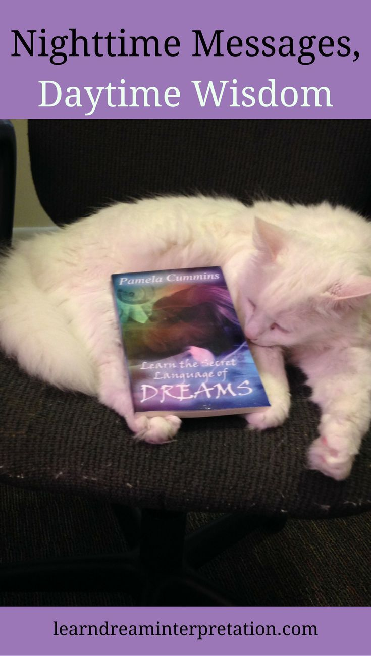 Dream Interpretation Becomes Easier When You Know What Category Your Dream  Fits Into This Book
